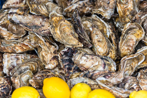 Oysters in Cancale, France
