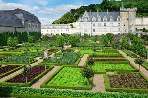Tour Villandry chateau and gardens.