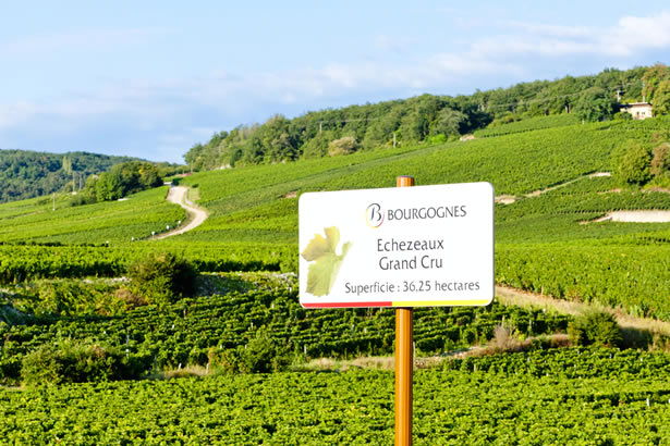 A sign over the vineyards in Burgundy, France.