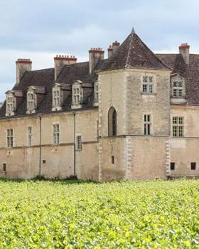 Two Nights In Burgundy tour from Paris