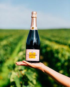Day Trip From Paris - Veuve Clicquot Champagne Day Tour