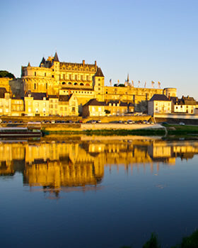 Loire Wine and Castle Tour from Paris