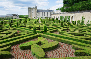 The gardens at Villandry castle in the Loire Valley.