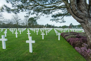 The American military cemetery at Colleville-sur-Mer.