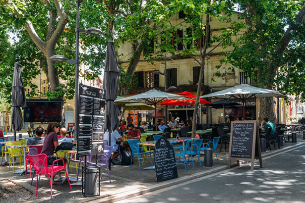 A cafe in a treelined square in Arles, France.