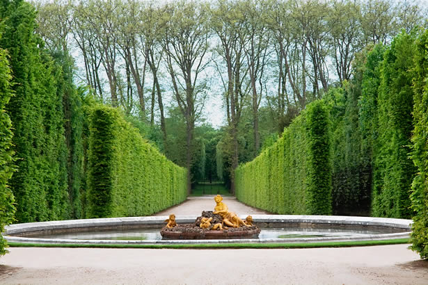 Perfectly trimmed hedges in the garden at the Palace of Versailles.