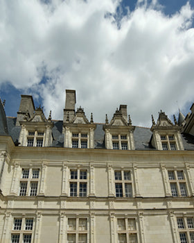 Loire Valley day tour from Paris.