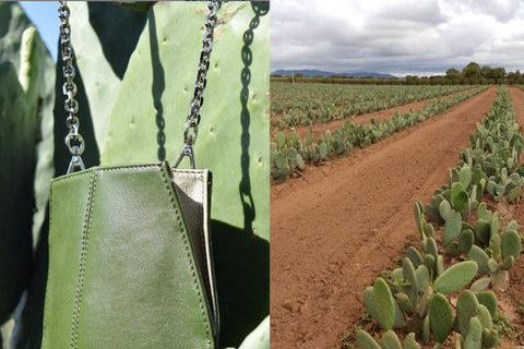 Cactus Ecofriendly Mexican Leather