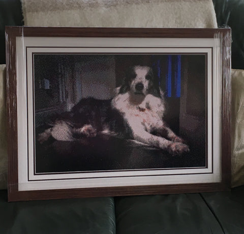 Framed diamond painting of a sitting dog