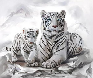 Beautiful White Tigers