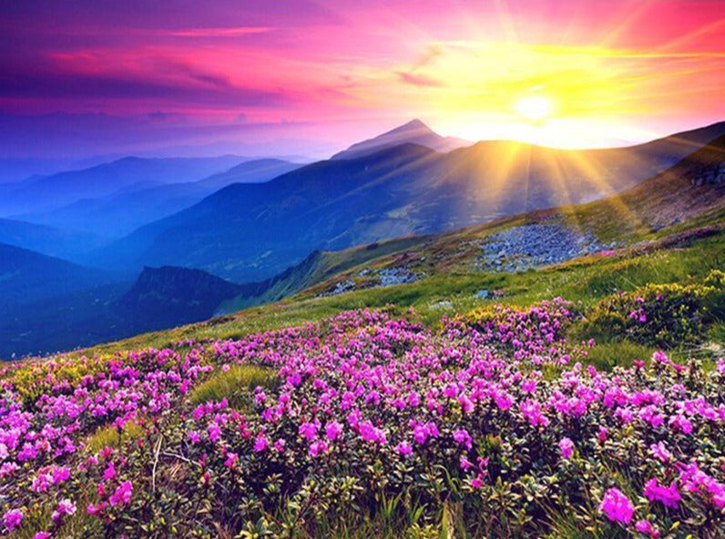 Colourful Sunrise in Mountains