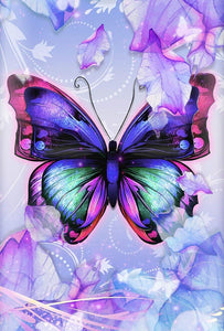 Butterfly Pastel Colors