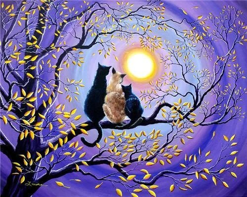 Cat Lovers in The Moonlight