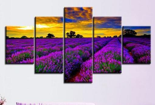 Purple Meadow Sunrise