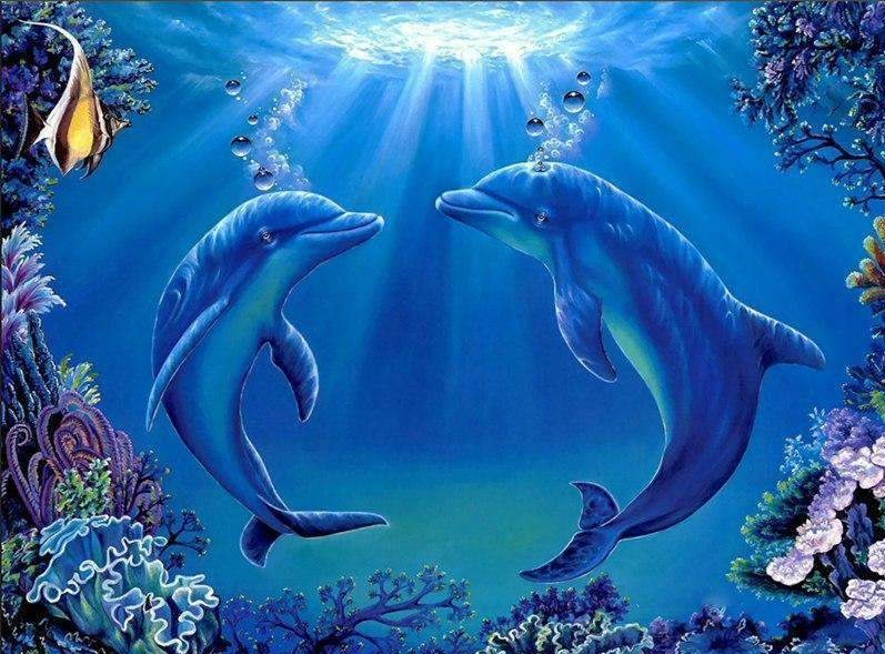 Dolphins Together Forever