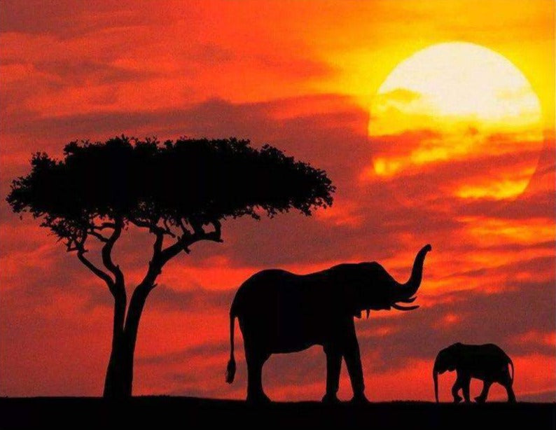 Elephants with Red Sunset
