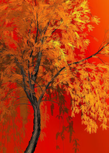 Red Tree Fall