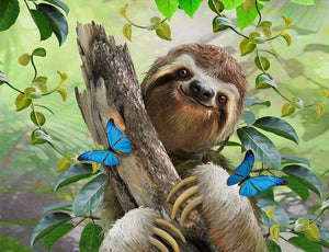 Sloth with butterflies