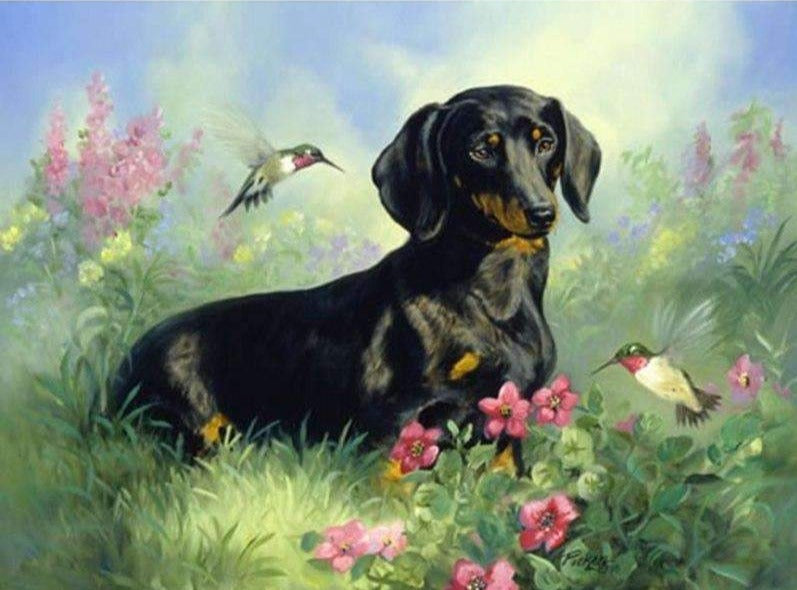 Dachshund with Birds