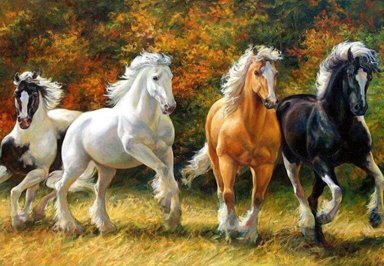 The Beautiful Colored Horses