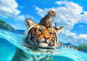 Tiger with Cat in the Water