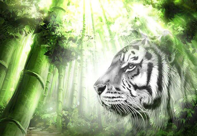 White Tiger in the Green Forest