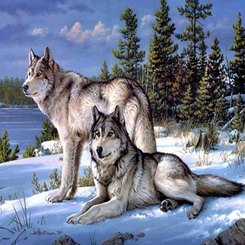 The Arctic Wolves