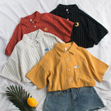 Embroidered Stripe Button Up Shirt (4 Colors)