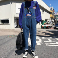 Eeyore Denim Overalls (Dark Blue)