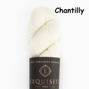 WYS Exquisite 4Ply