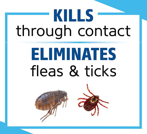 eliminate flea & ticks