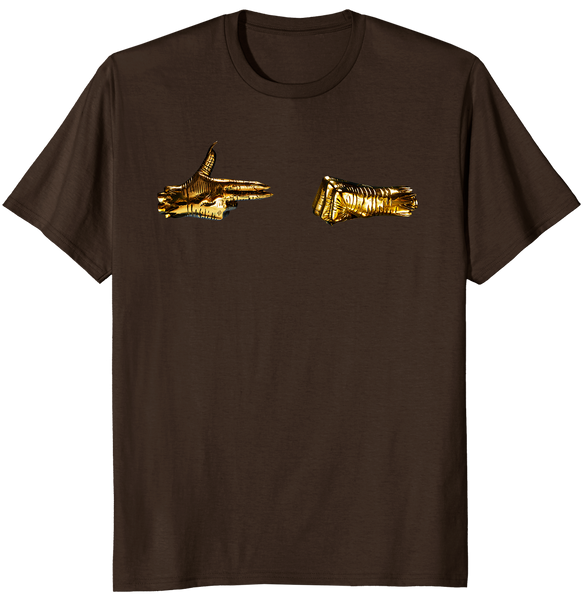 RTJ3 T-shirt (Brown)
