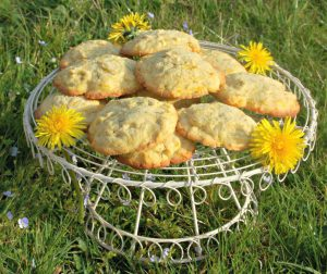 daffodil and lemon biscuits