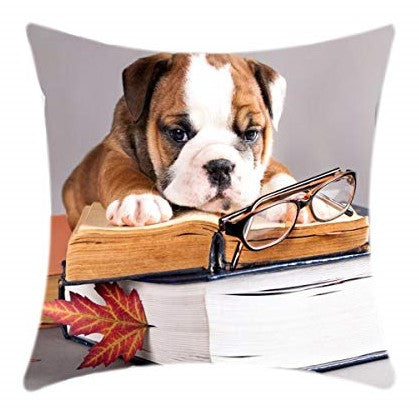 Bulldog with Book Animal Print Square 18 x 18 Cotton Cushion Cover, Pillowcase for Sofa, Couch, Bed