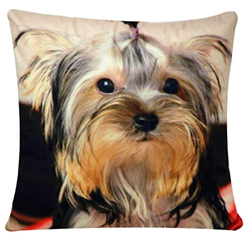 Shih Tzu Dog Animal Print Chenille Cotton 17 x 17 inch Cushion Cover Pillowcase for Sofa Bed Couch