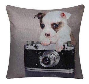 Bullahshah Puppy Chihuahua the Photographer Animal Print Square 17 x 17 Cushion Cover, Pillowcase for Sofa Bed Couch