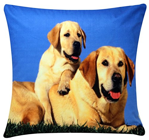 Golden Retriever Labrador Dog & Puppy Print Chenille Cotton 17 x 17 inch Cushion Cover for Sofa Bed Couch