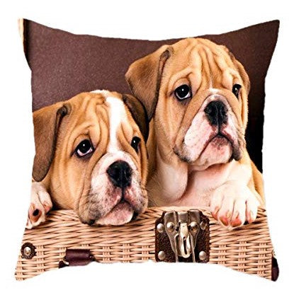 Twin Bulldog Dog, Animal Print Brown Square 18 x 18 Cotton Cushion Cover, Pillowcase for Sofa Bed Couch