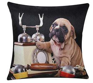 Bullahshah Pug Dog with Telephone Animal Print Square 17 x 17 Cushion Cover, Pillowcase for Sofa Bed Couch