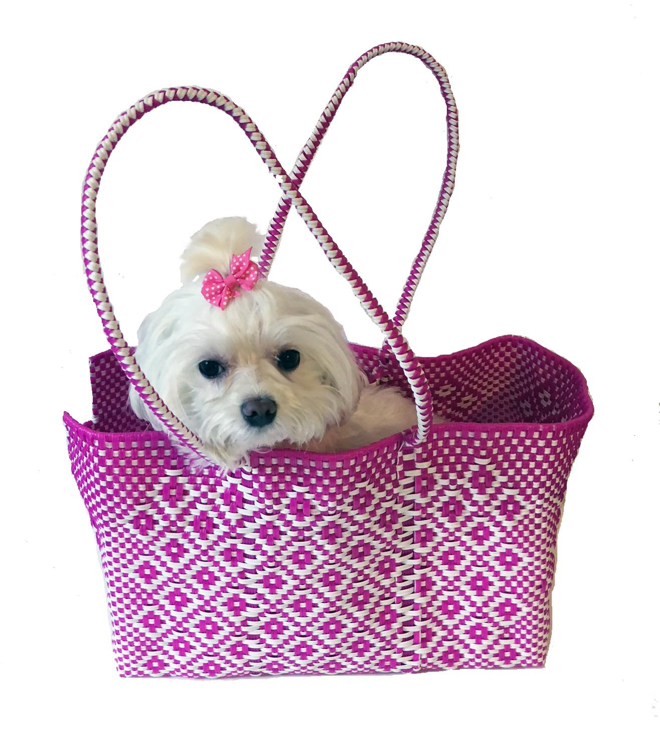 Dog Totes and Carriers