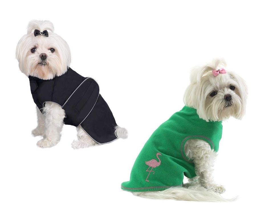 Dog Clothes