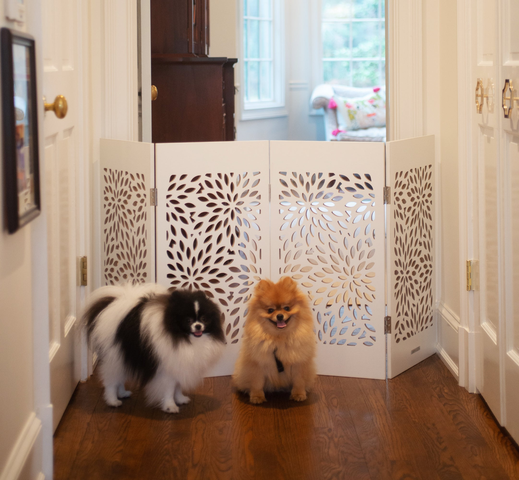 Decorative Pet Gates
