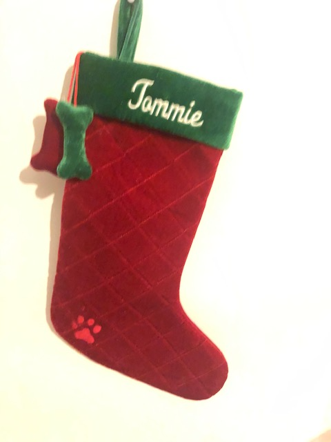 Dog Stocking for Tommie