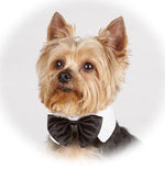 Load image into Gallery viewer, Black Bow Tie White Collar Size Small - A Pet's World