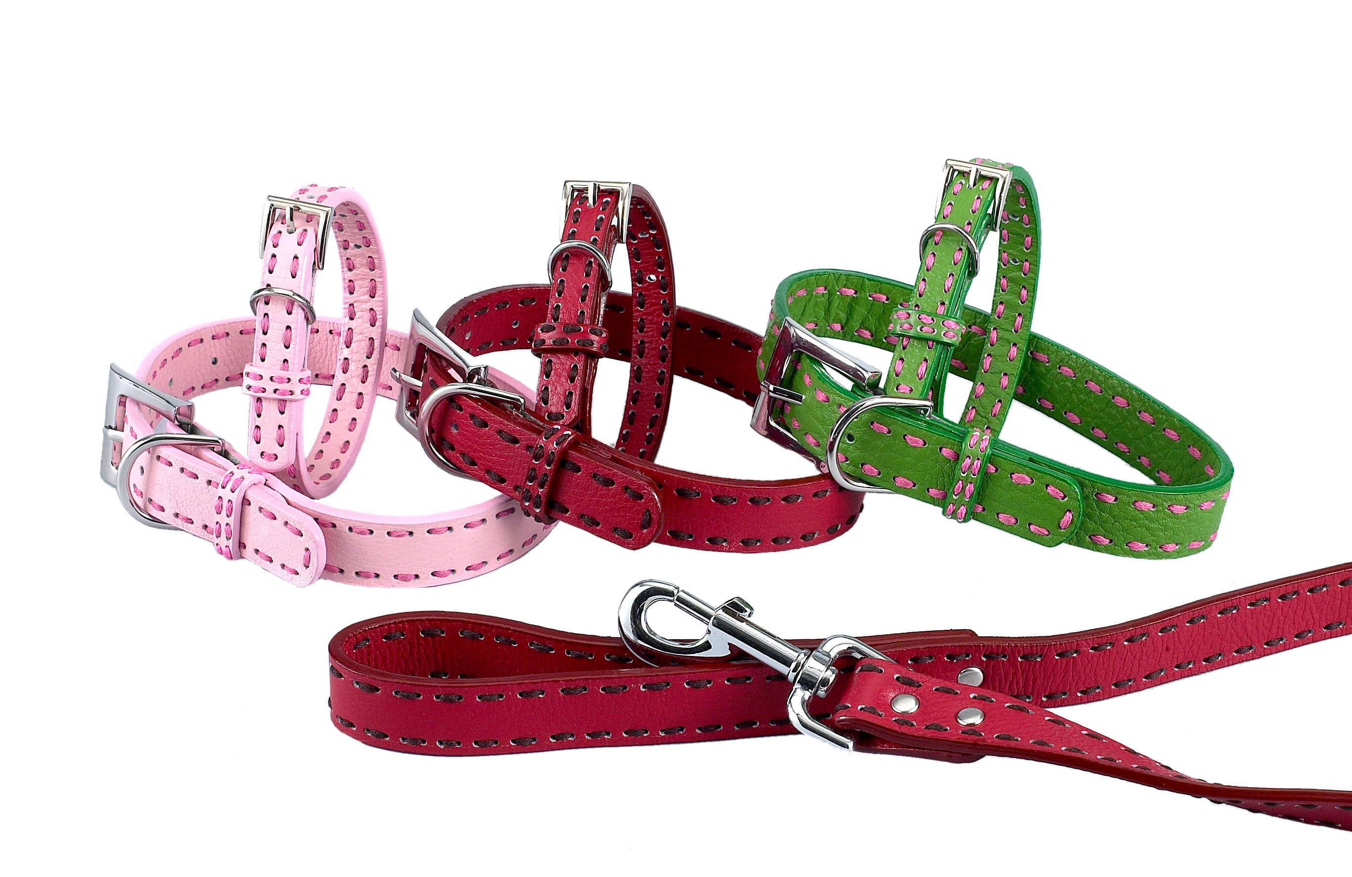 Leather Dog Collars - A Pet's World