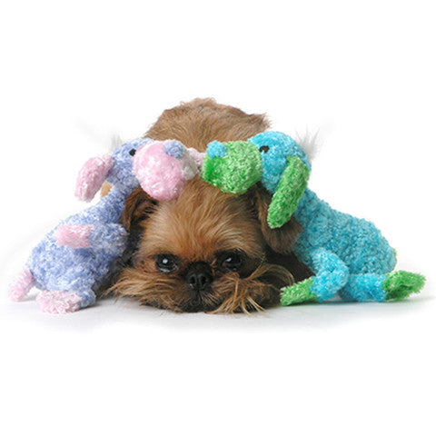 Dog Toys - Floppy Puppies - A Pet's World