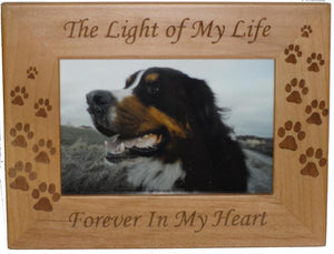Light of My Life Forever in My Heart Photo Frame 4 x 6 - A Pet's World