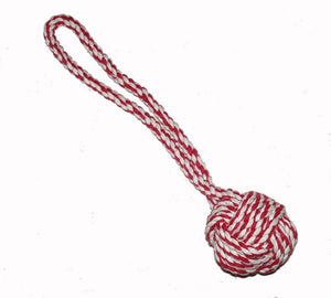 Dog Toys-Rope Knot Throw Toy - A Pet's World