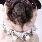 Load image into Gallery viewer, Embellished White Ribbon Dog Collars with Petal Flowers and Pearls - A Pet's World