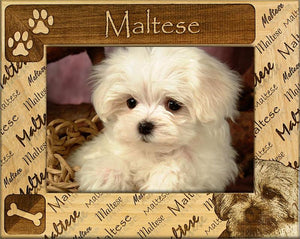 Choose Your Dog Breed Photo frame - A Pet's World